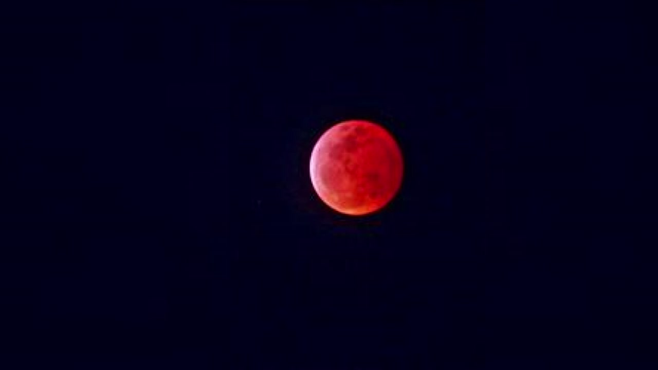 You didnt need a telescope to look at the lunar eclipse Sunday. It was in your backyard!