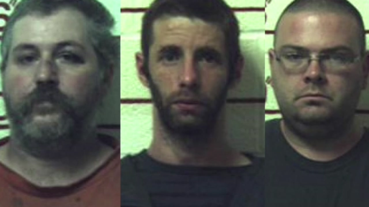 3 men face over 1K counts each of sexually abusing animals