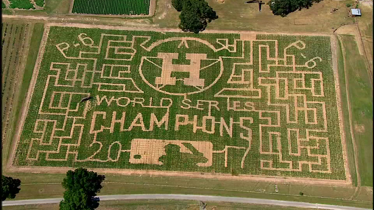 P-6 Farms unveils super-sized Astros corn maze ahead of the fall season