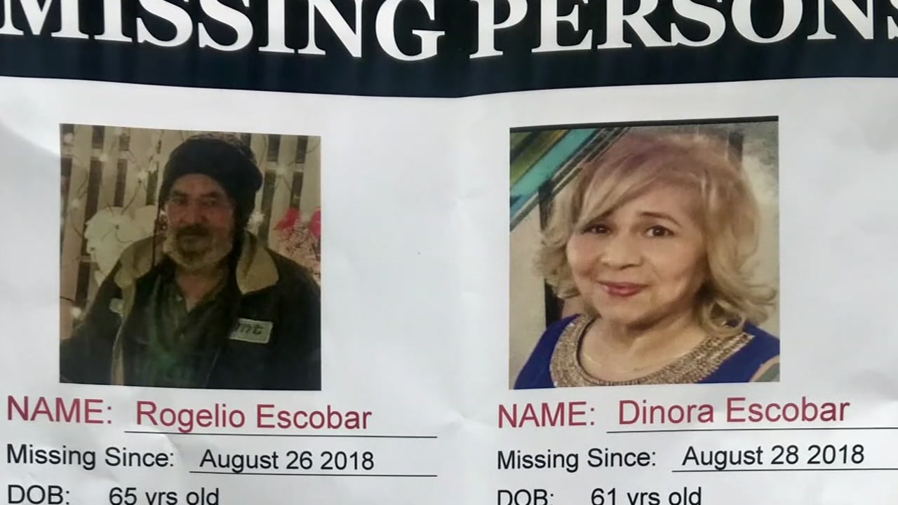 Woman goes missing looking for brother who disappeared