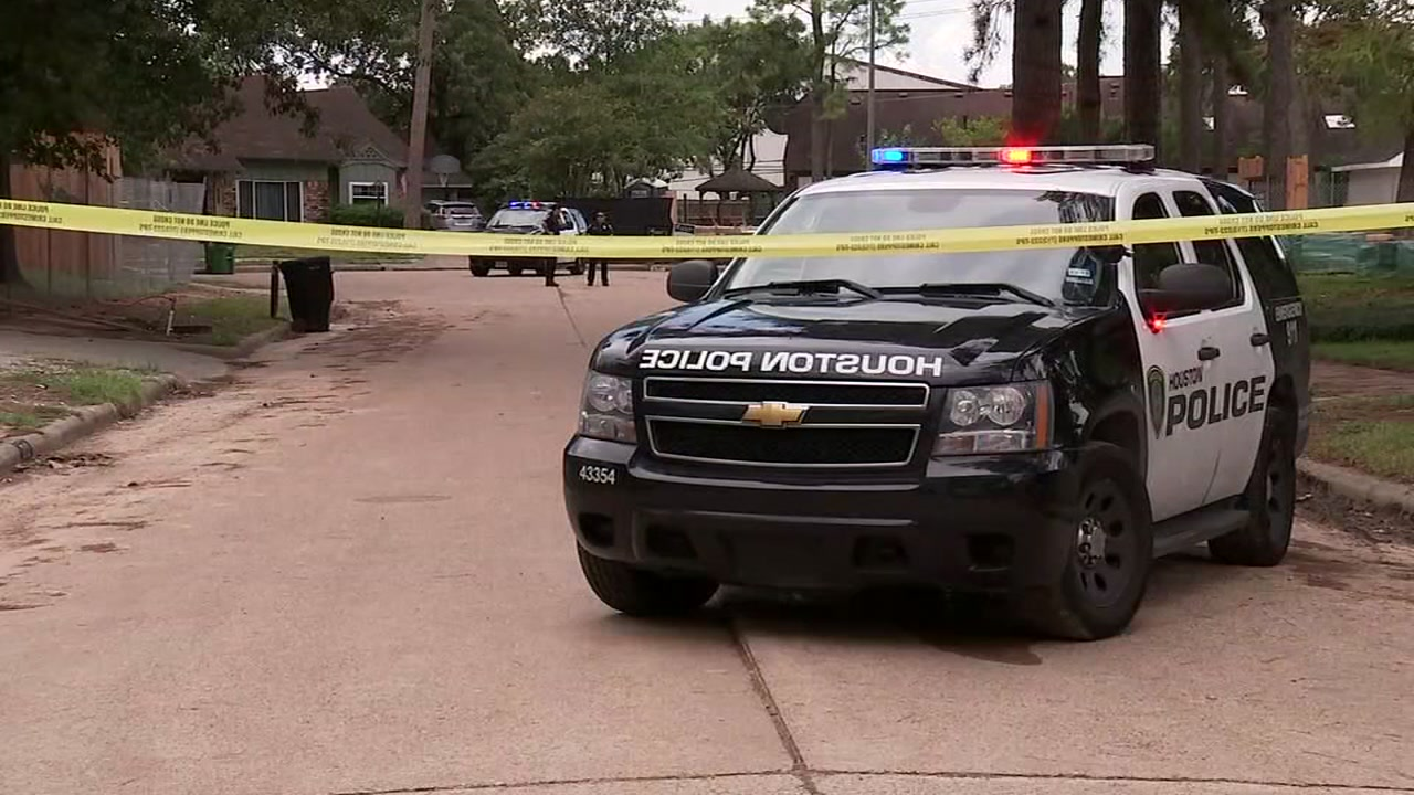 ABC13s Miya Shay reports from west Houston where police say a woman has died after an apparent domestic dispute.