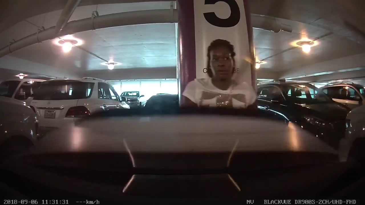 Raw video shows the suspect rummaging through the victims parked car before sprinting off.