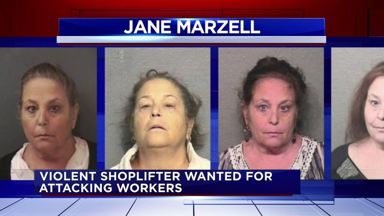 Shoplifting suspect accused of violent attack on store workers