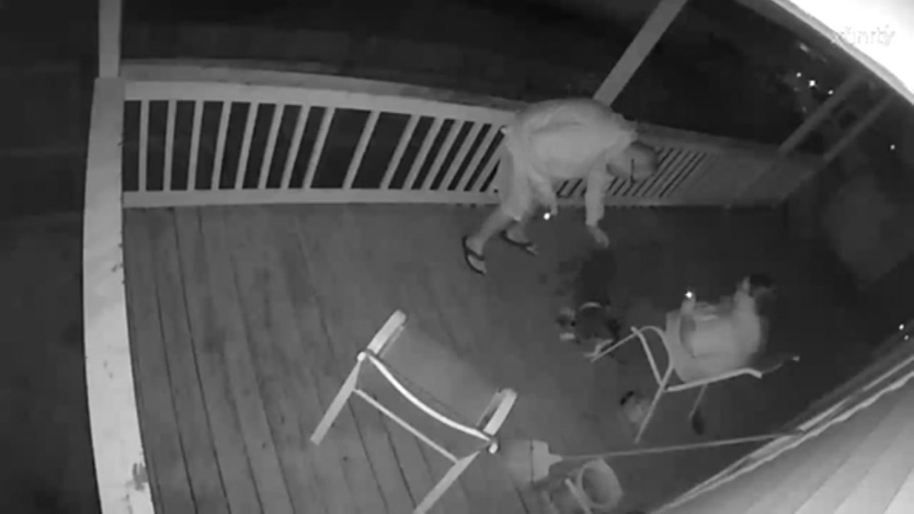 Galveston residents concerned about dog attacks on the island.