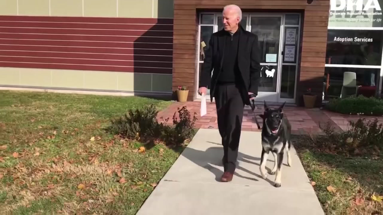 Joe Biden adopts dog