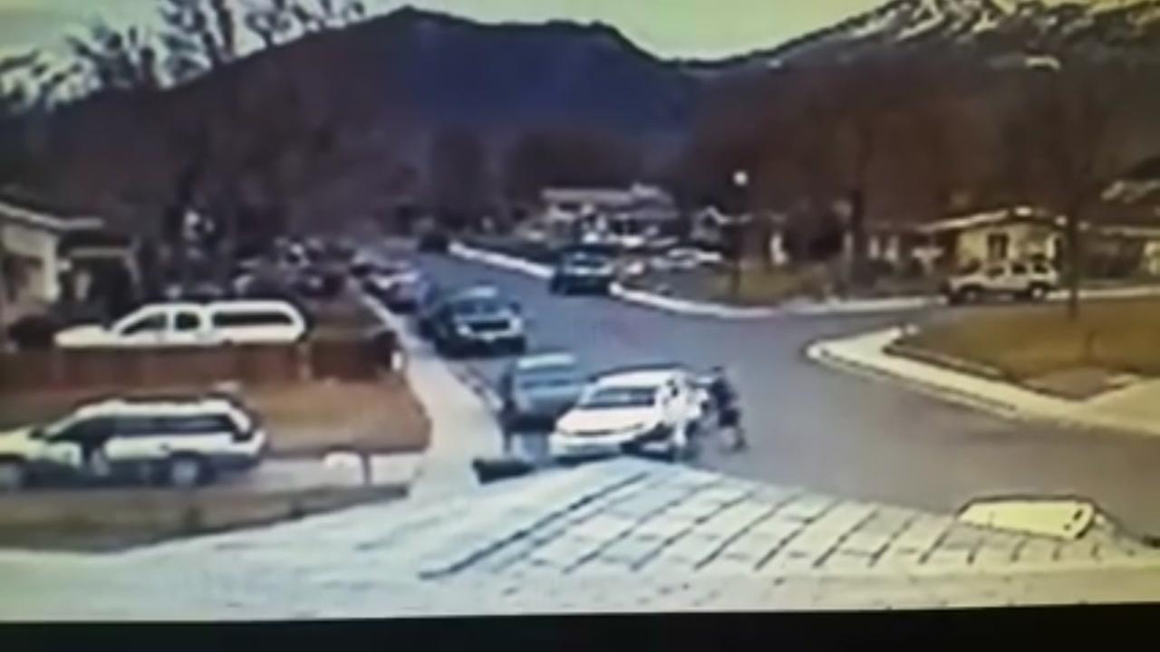 Machete attack caught on camera