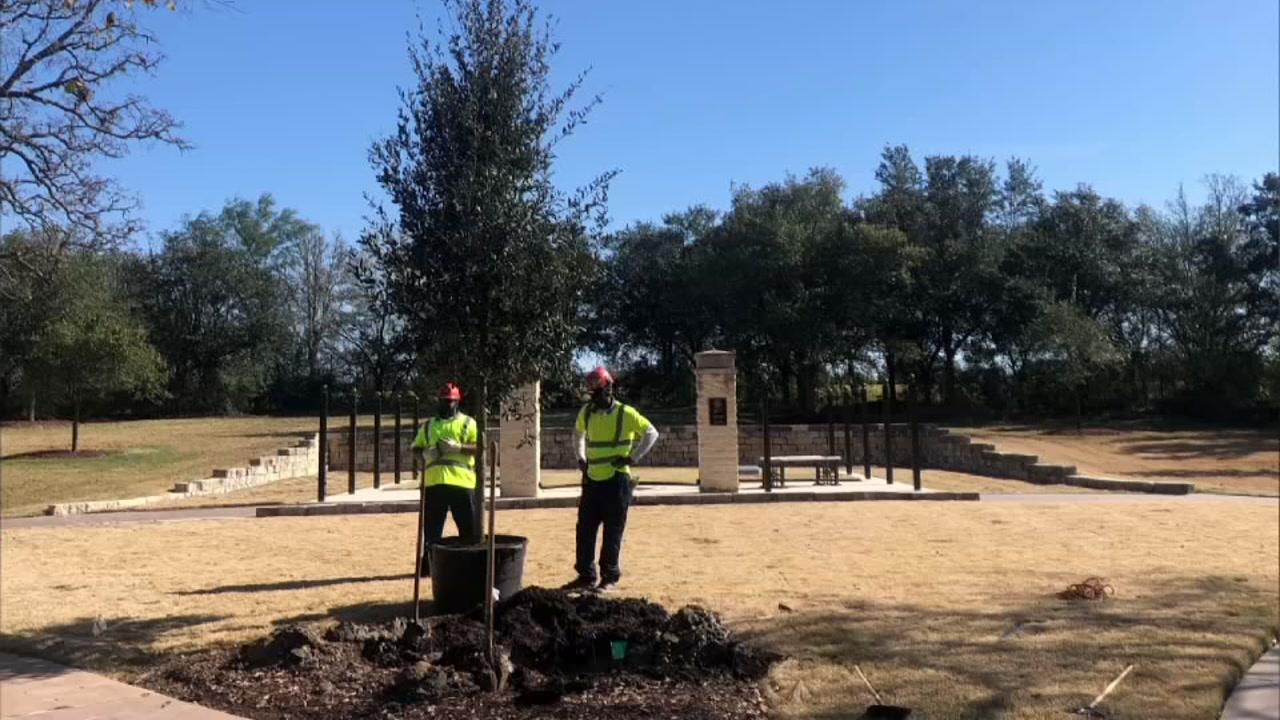 Local company provides live oak tree for Pres. George HW Bush