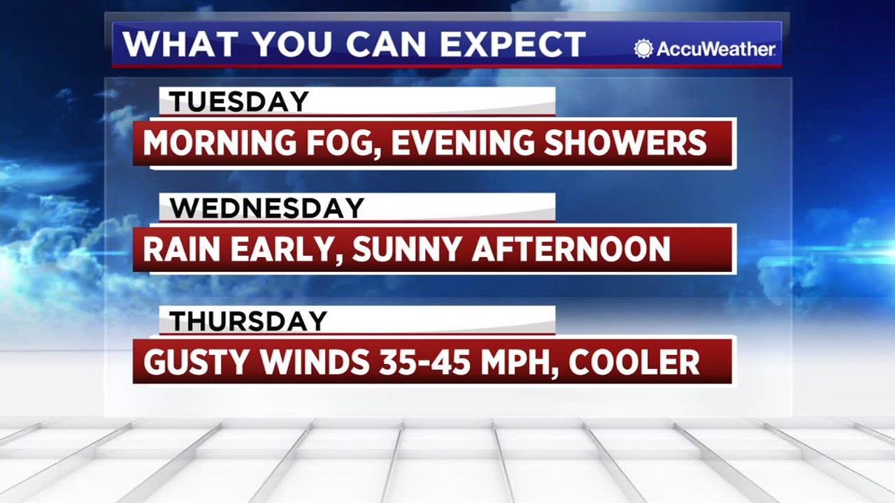 Travis says expect some fog and showers over the next few days before the sun returns.