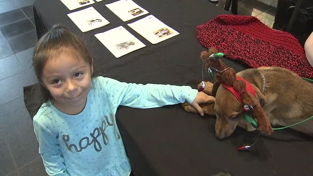 Houston SPCA offering lower adoption fees at Neiman Marcus