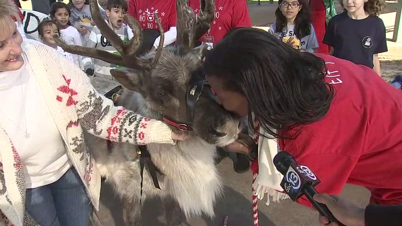 Principal promised to bring a reindeer and kiss it if every student completed a random acts of kindness.