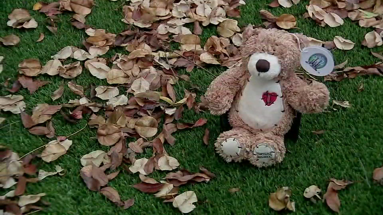 Woman works to reunite teddy bear filled with ashes to rightful family