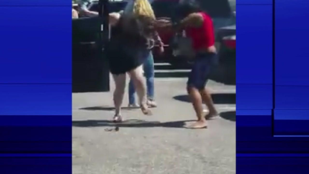Zoo Parking Lot Fight