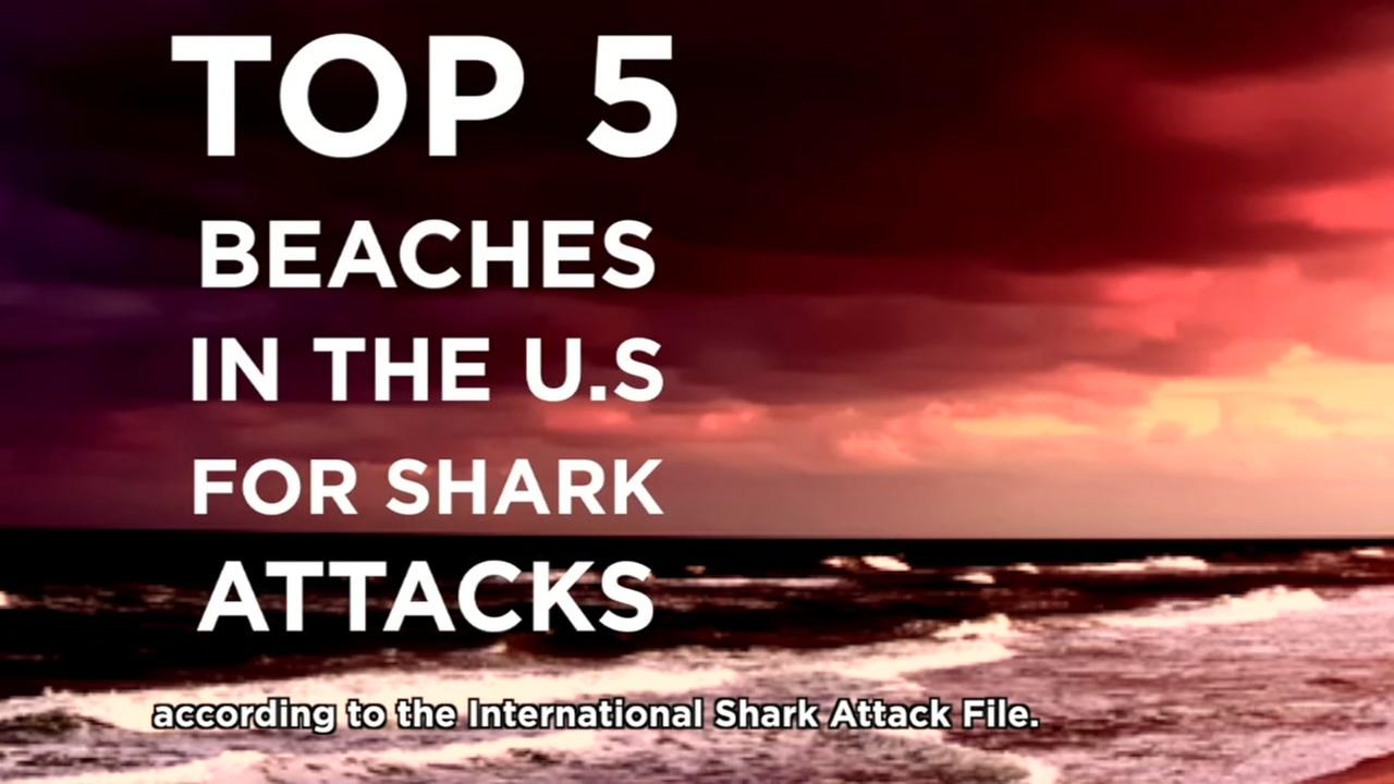 These U.S. beaches have the most shark attacks