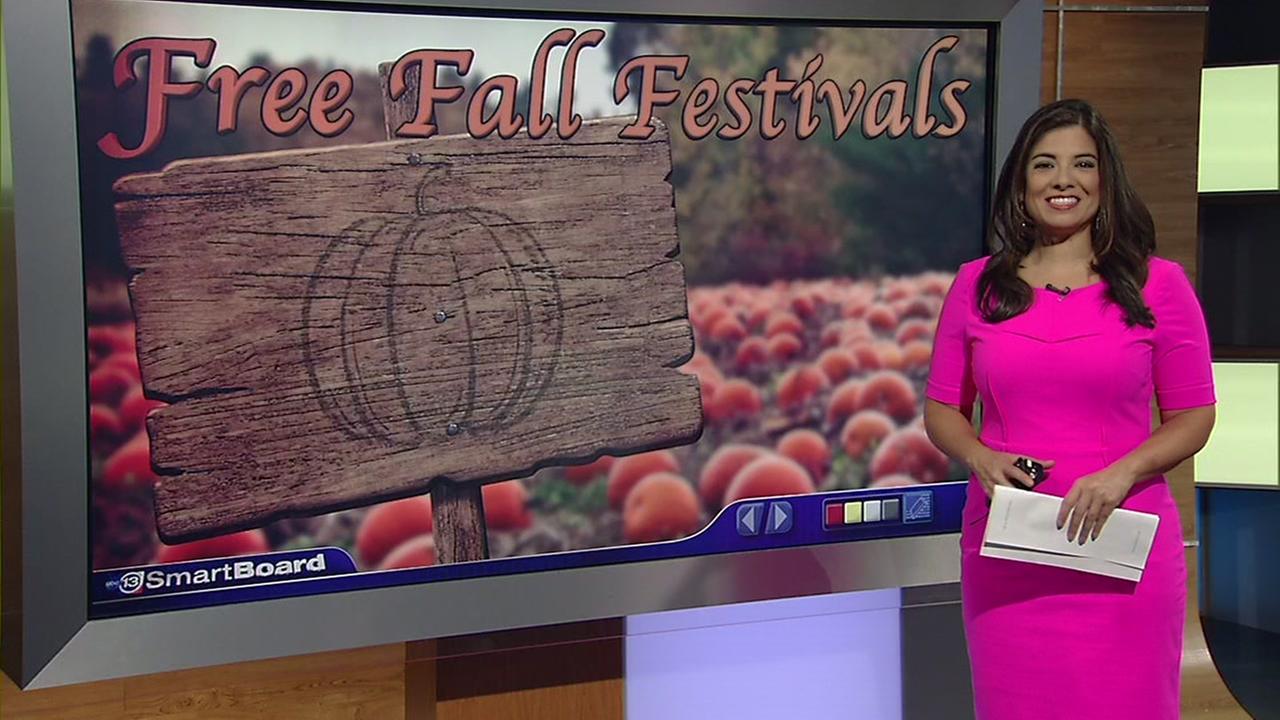 Free Fall Festivals