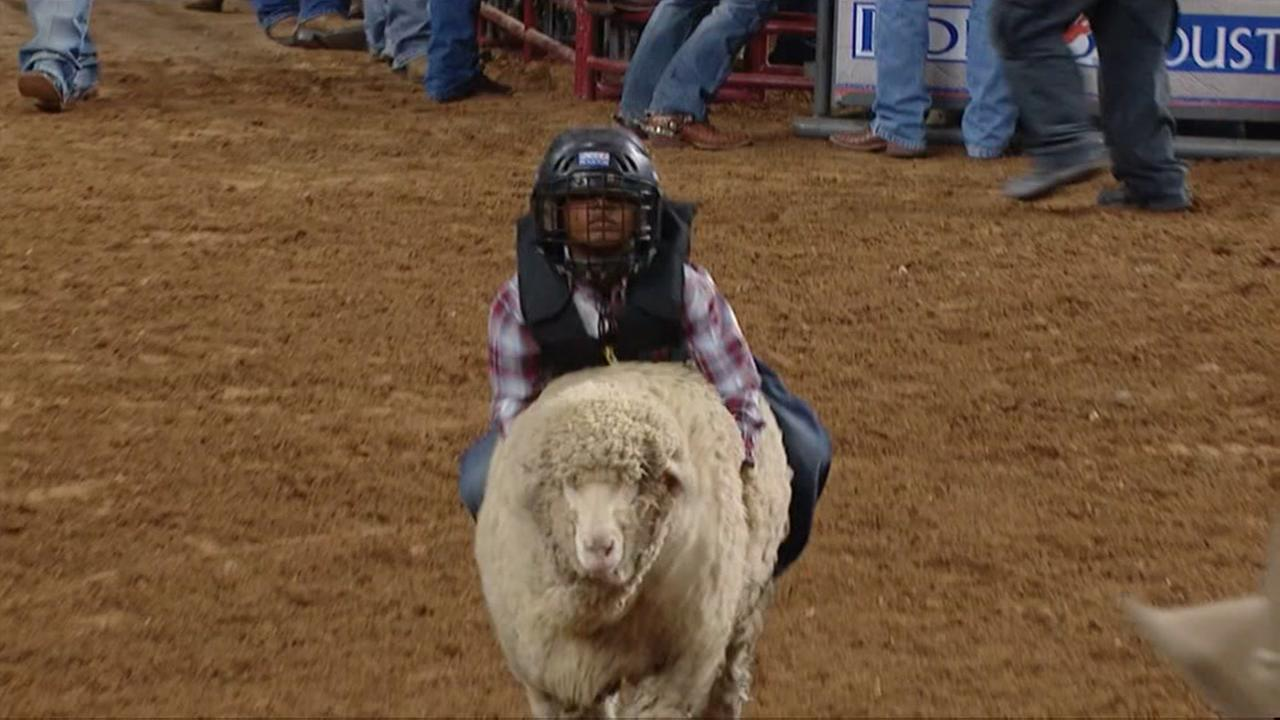Mutton Bustin Sign Up