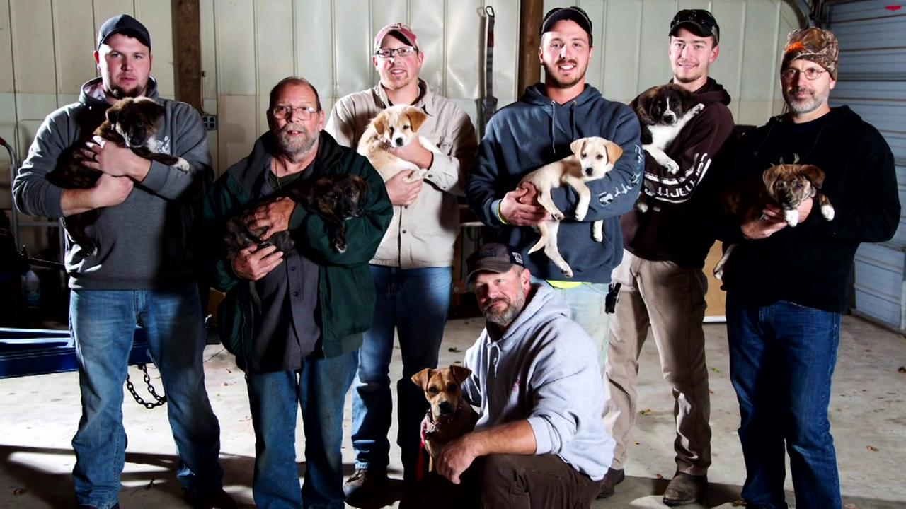 Bachelor party turns into puppy rescue mission