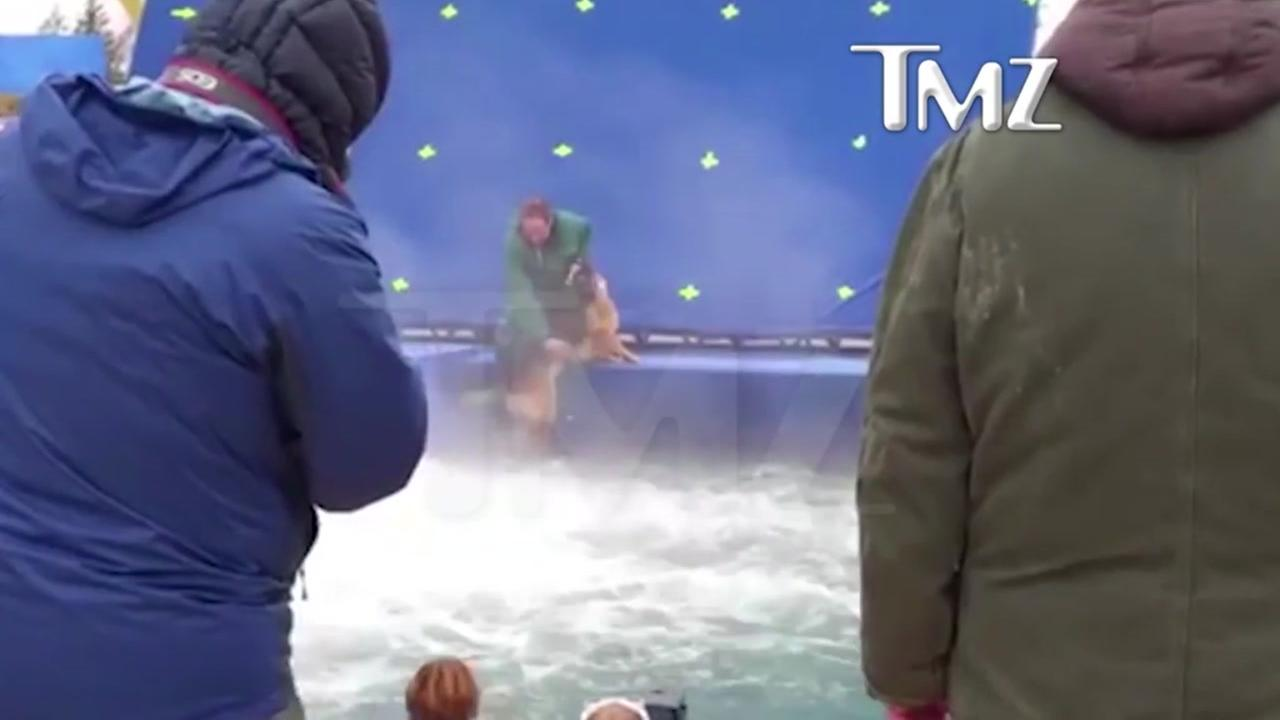 Premiere of A Dogs Purpose canceled amid treatment issue