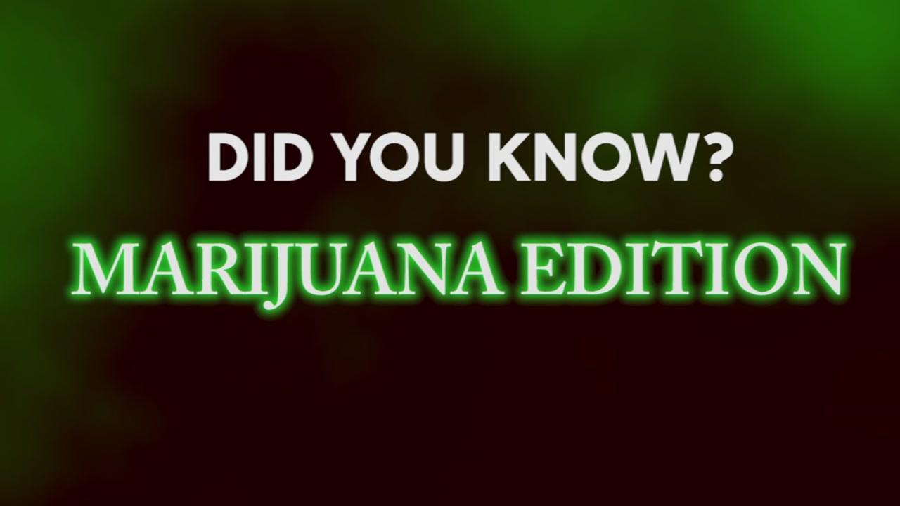 Did you know? Marijuana Edition