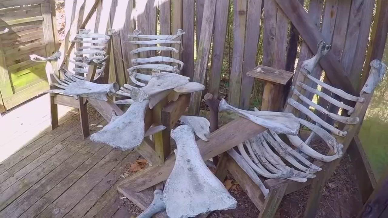 Enter Bone House made of more than 1,000 bones