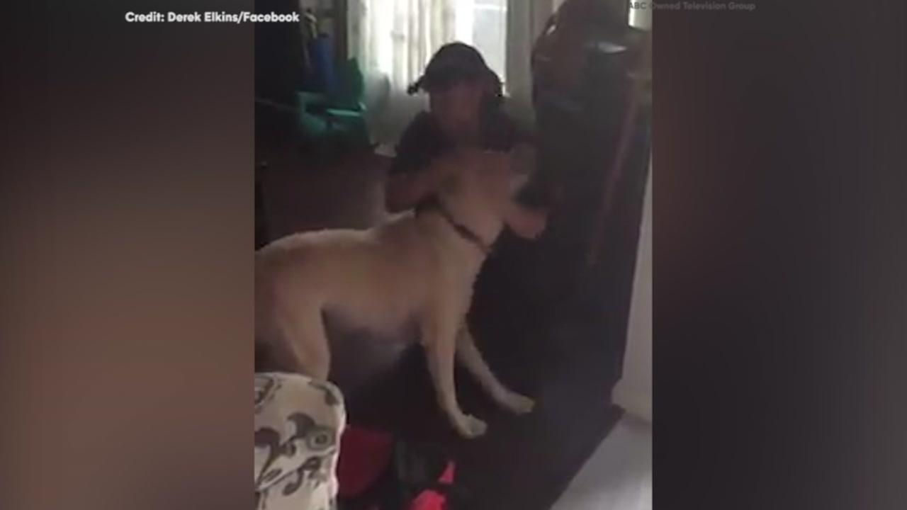 VIDEO: Texas paramedic reunited with dog after 164-hour shift