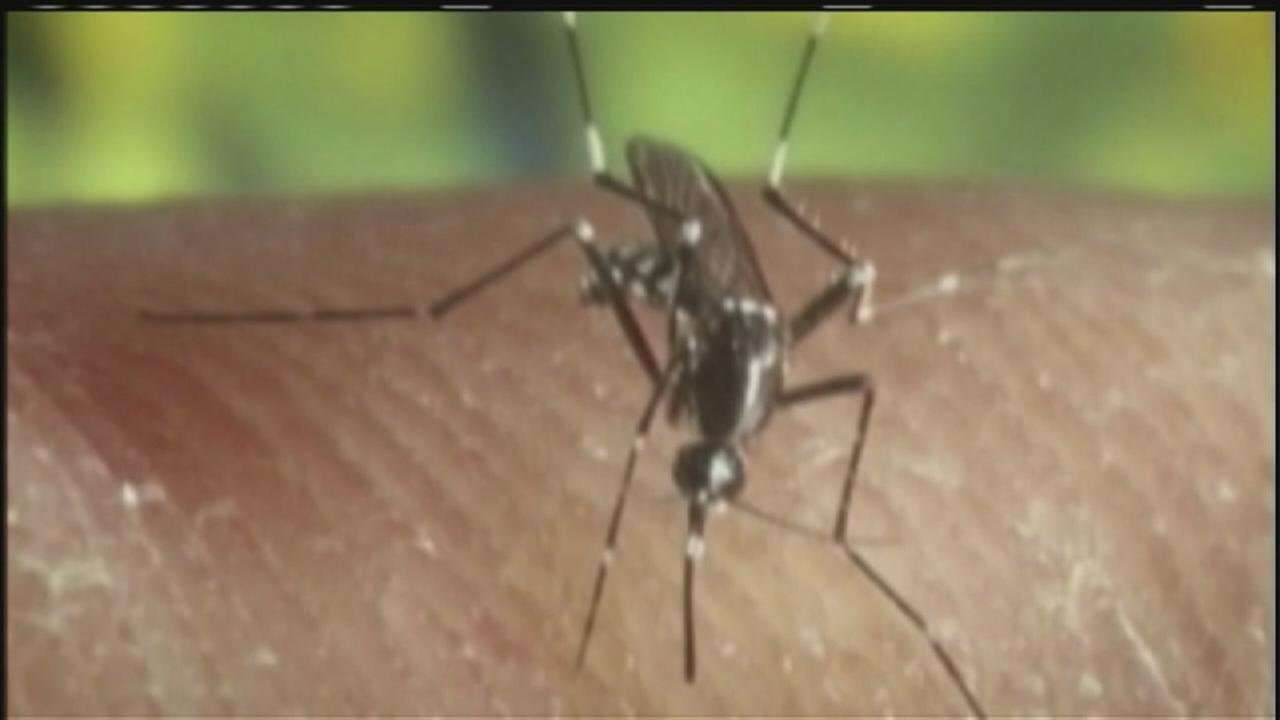 Mosquito in Harris Co. begins aerial mosquito spraying