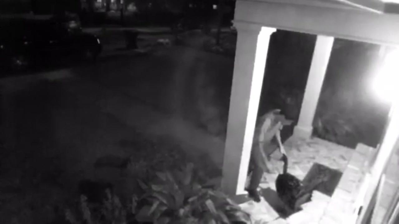 Thief caught on camera stealing decor