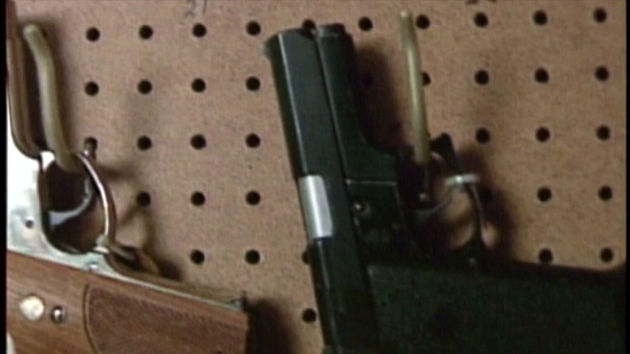 Big Black Friday gun sales