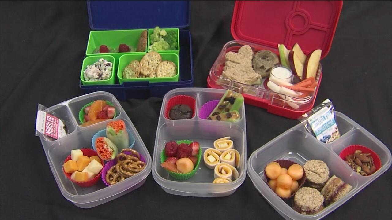A weeks worth of healthy recipes for your kids school lunch