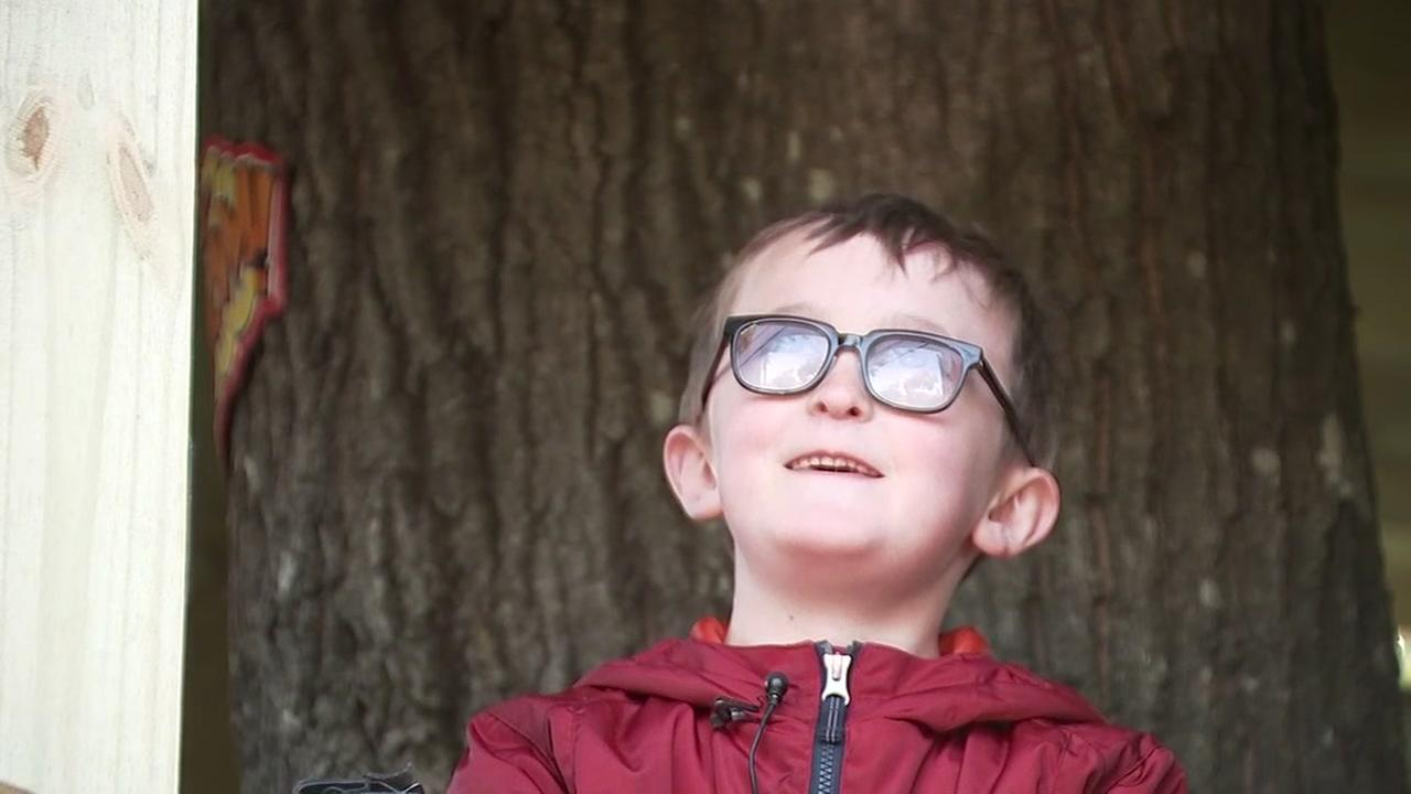 Make-A-Wish helps build tree house for boy with cancer