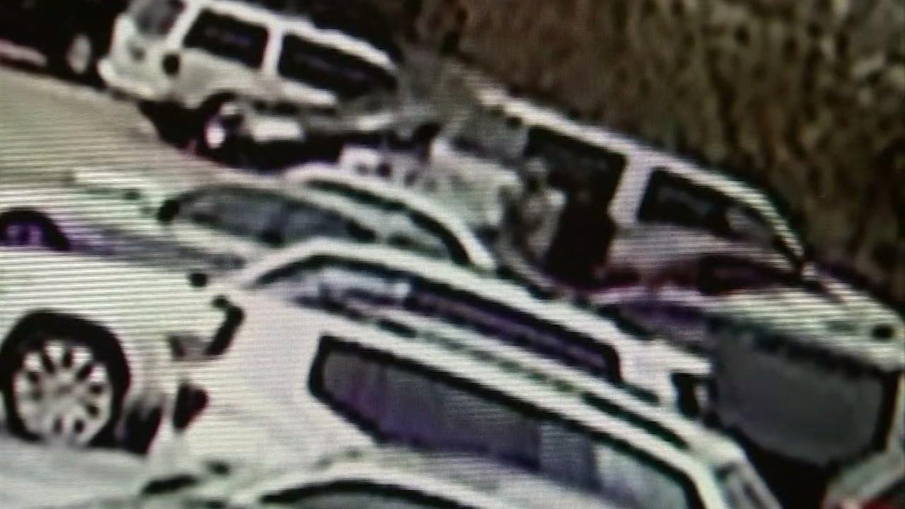 Nearly 20 vehicles vandalized at Houston church