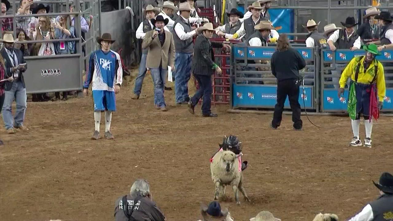 Girl from Spring wins Mutton Bustin