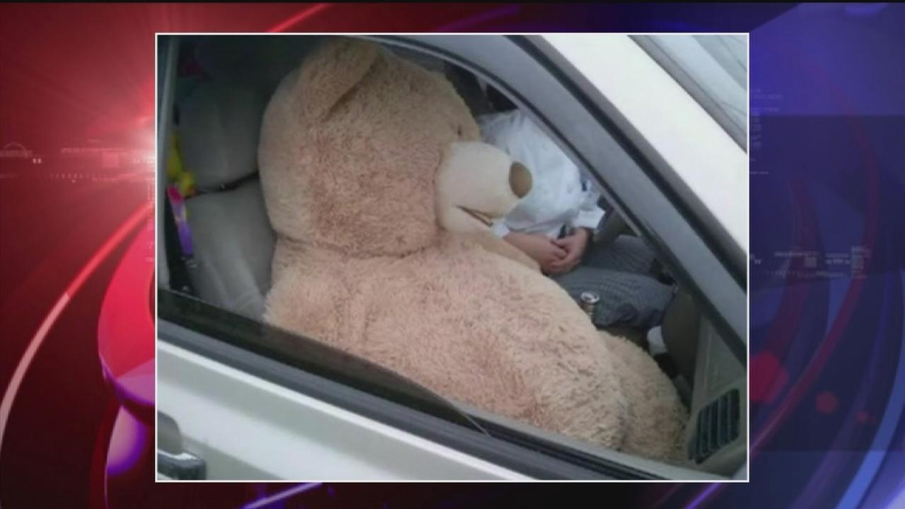 Teddy bear HOV