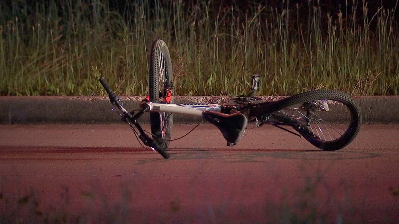 Bicyclist hit and killed along I45