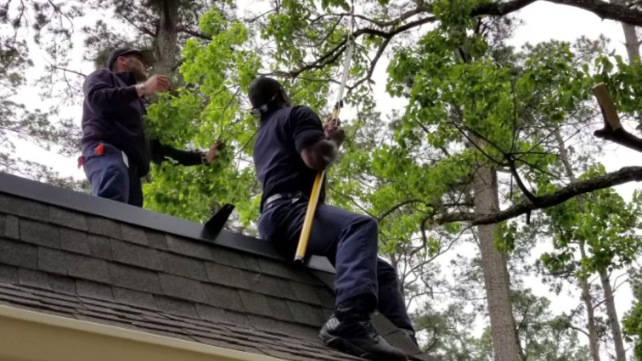 Spring Fire Department cuts mans trees after he falls from ladder