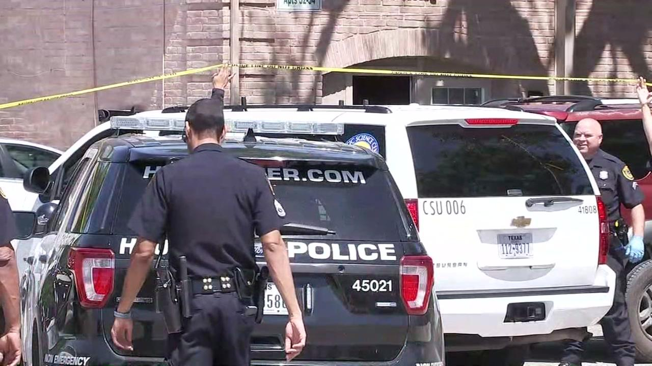 Woman killed in apparent murder-attempted suicide