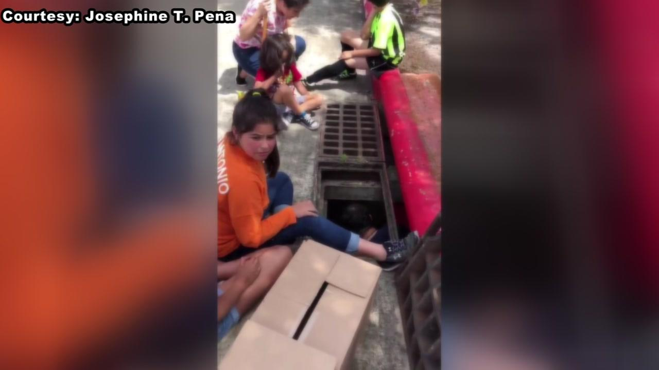 Ducks rescued from drainage