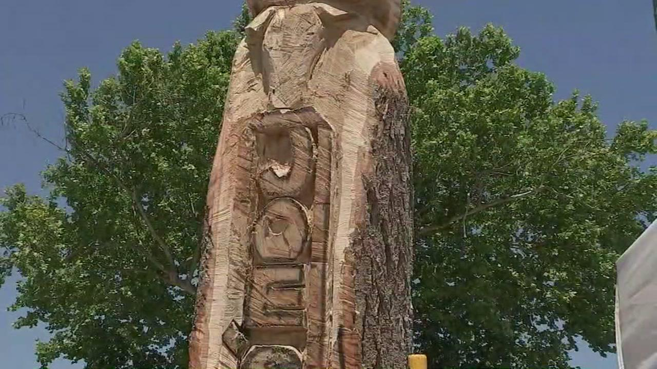 Man finds way to save 100 year old tree in Alvin