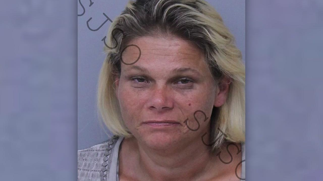 Woman named Crystal Methvine arrested for possession of Crystal Meth