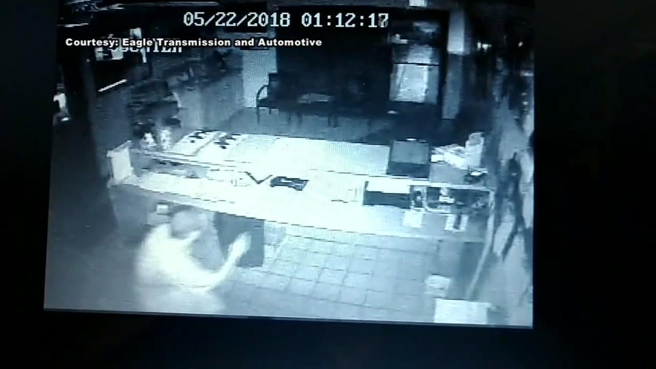 Friendswood burglar