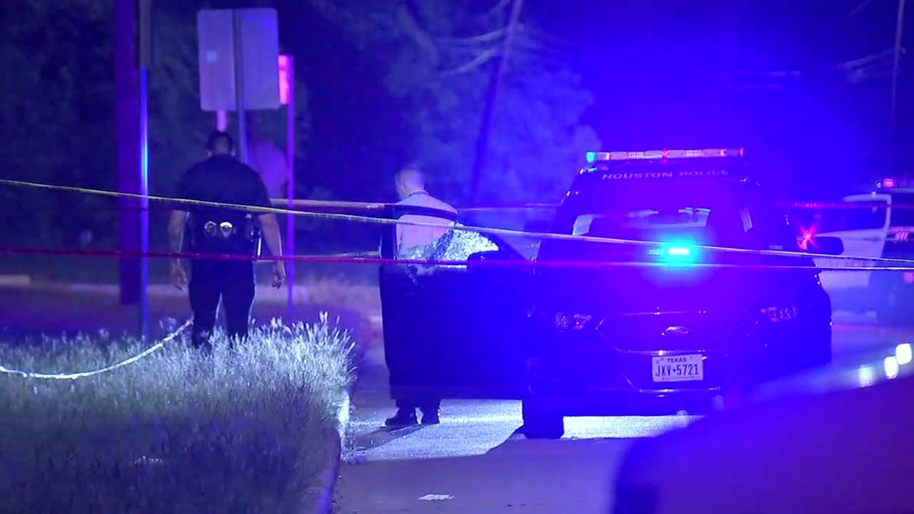 Security guard shot and killed