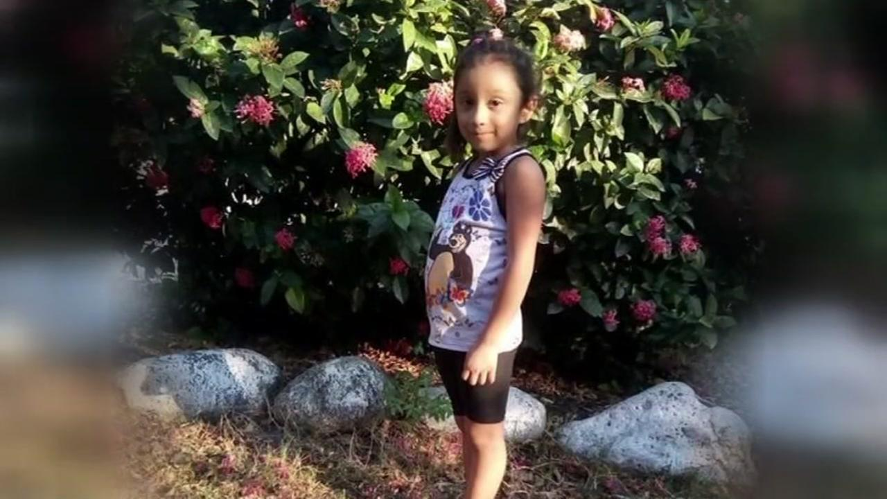 Grandmother searching for granddaughter detained and separated at border