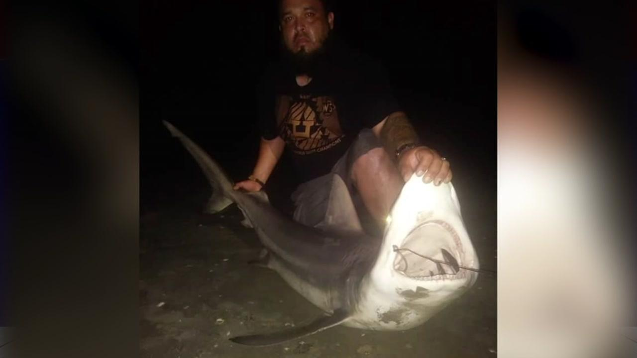Galveston man reels in huge shark before wrapping up day of fishing