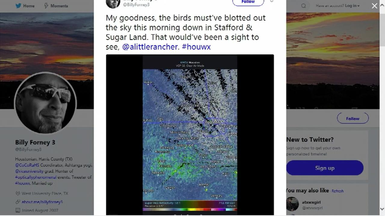 Sparrows take flight near Sugar Land causing fascinating radar image