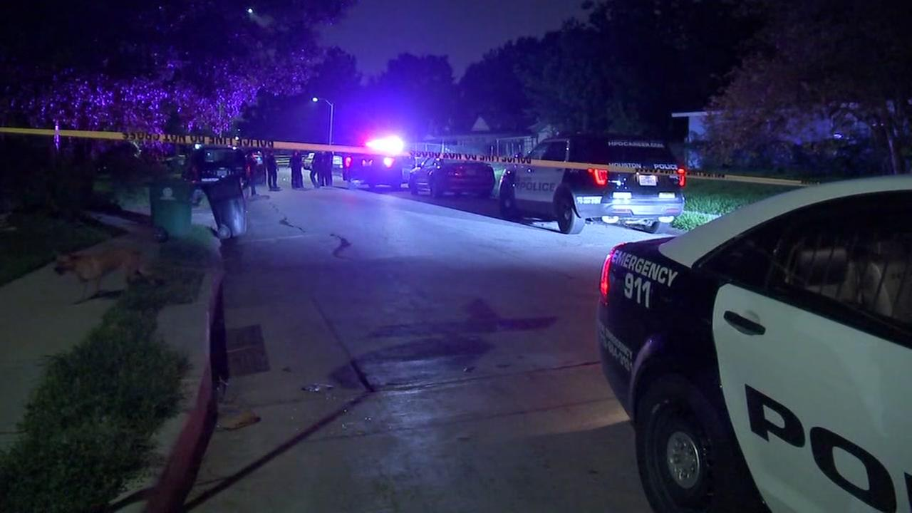 Man killed in drive-by shooting in southeast Houston