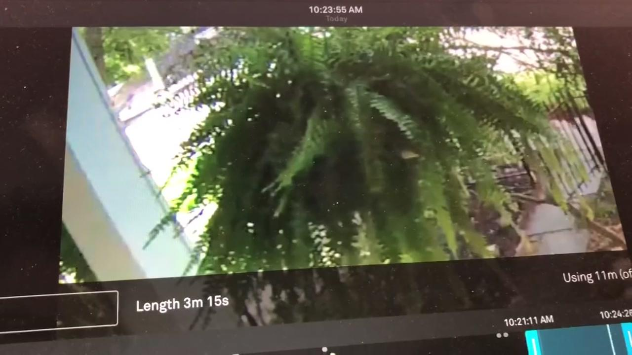 Stolen trailer caught on surveillance video