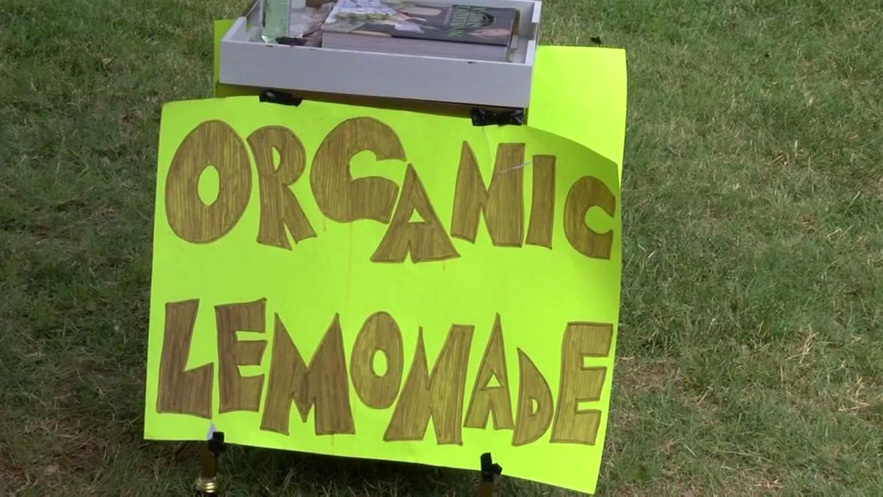 Boy held up while selling lemonade