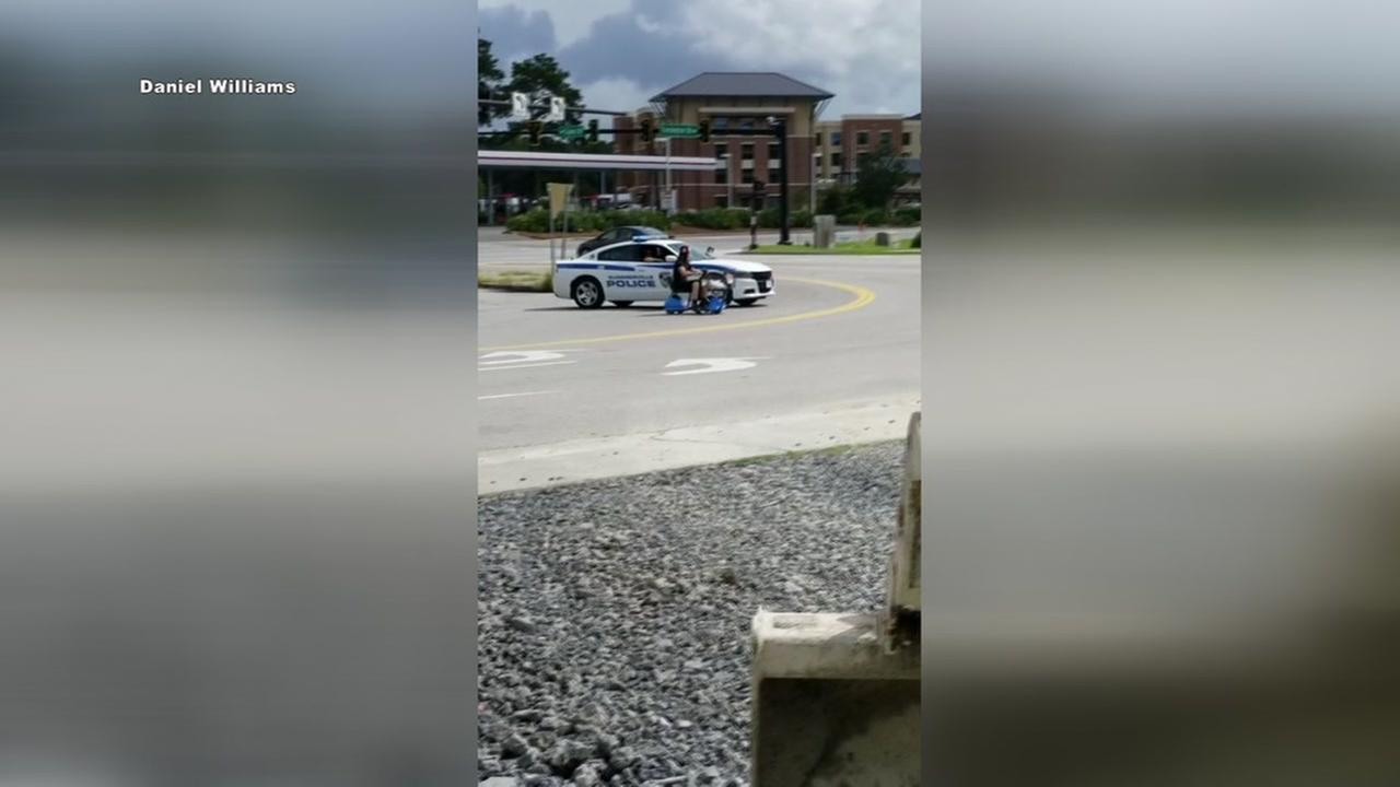 Police chase man driving walmart cart
