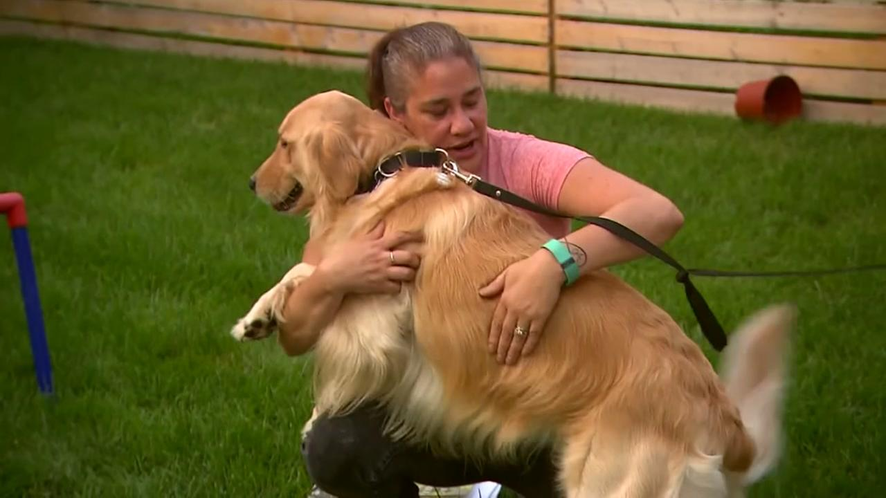 Pet leasing company threatens to repossess dog