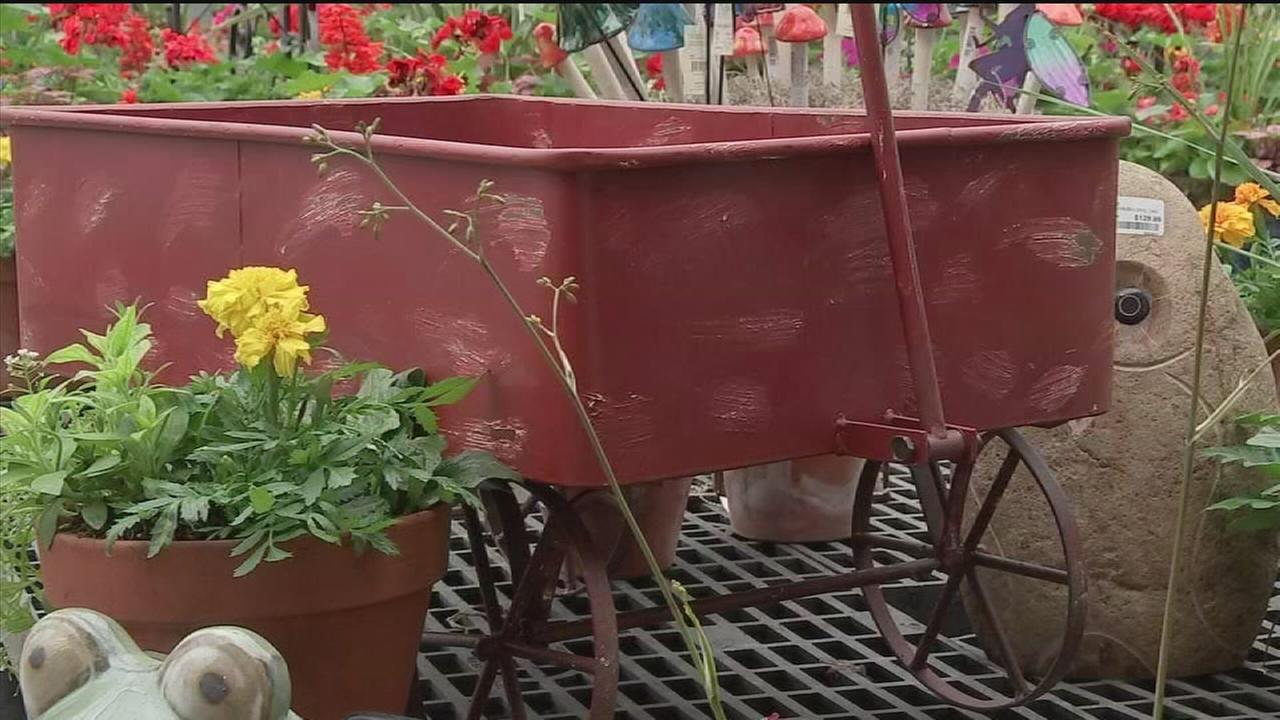 Turn trash into treasure with container gardens
