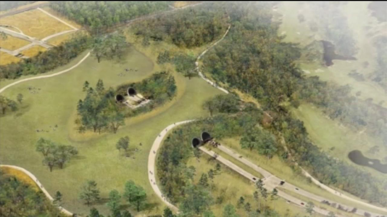 Memorial Park plan approved by city council